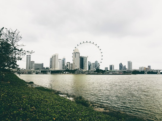 Processed with VSCO with t1 preset